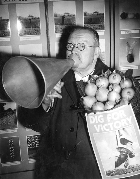 Onion「Campaigning Warden」:写真・画像(12)[壁紙.com]