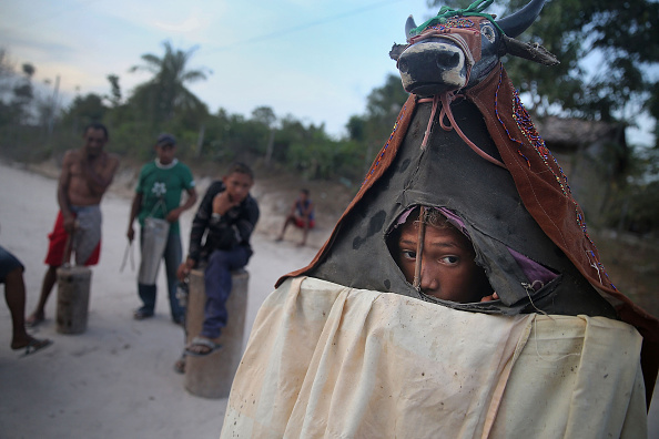 Lumber Industry「Quilombo Residents Threatened By Ranching And Logging In Brazil's Amazon」:写真・画像(12)[壁紙.com]