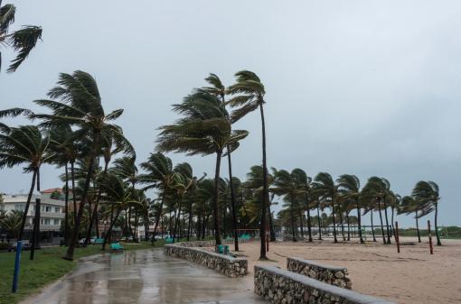 Hurricane - Storm「Storm at the beach」:スマホ壁紙(17)