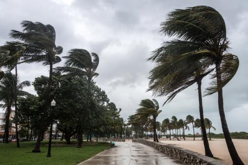 Hurricane - Storm「Storm at the beach」:スマホ壁紙(16)