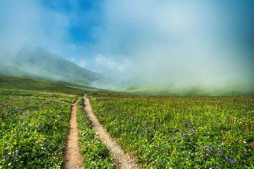 コーカサス山脈「コーカサスのマウンテインの緑の谷を通る歩道」:スマホ壁紙(17)