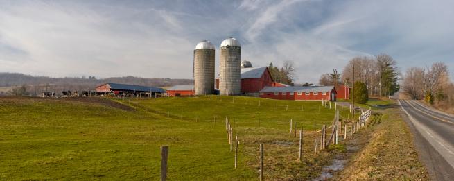 Dairy Farm「Farmstead Panorama on a Winter  Morning」:スマホ壁紙(13)