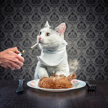 Chicken Meat「Dinner time」:スマホ壁紙(5)