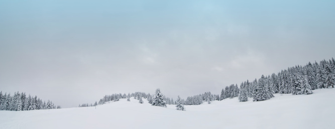 Ski Resort「Snow Covered Winter panorama (XXXL)」:スマホ壁紙(4)