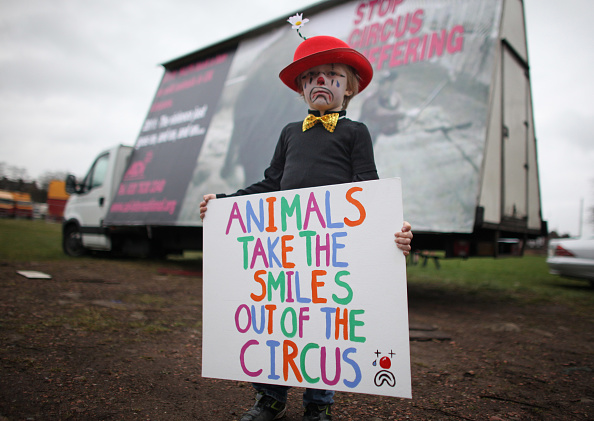 Circus Tent「Bobby Roberts Super Circus Rolls Into Town After Animal Cruelty Scandal」:写真・画像(4)[壁紙.com]