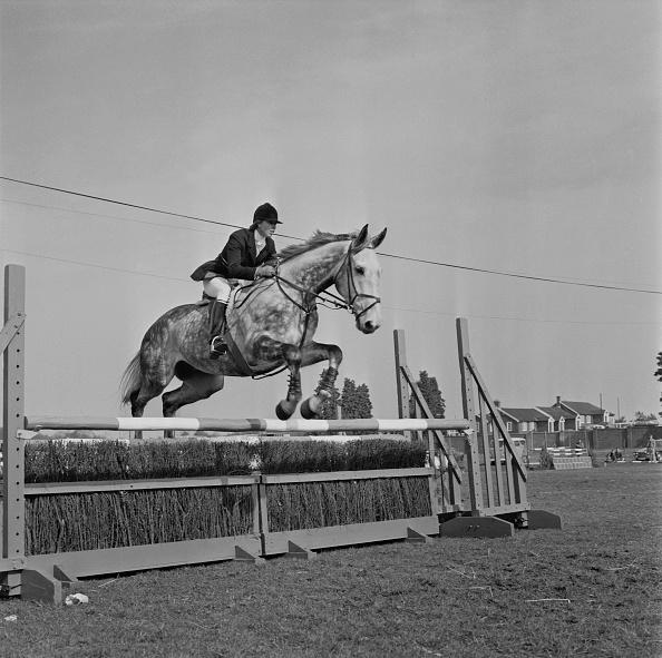 Horse「Princess Anne At Crookham Horse Trials」:写真・画像(5)[壁紙.com]