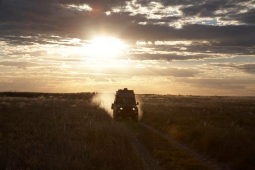 4x4「Botswana, four wheel drive car driving across field at sunset」:スマホ壁紙(4)