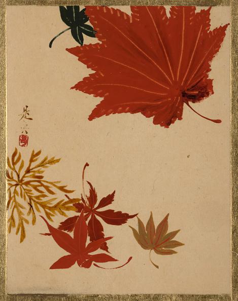 かえでの葉「Maple Leaves. Creator: Shibata Zeshin.」:写真・画像(12)[壁紙.com]