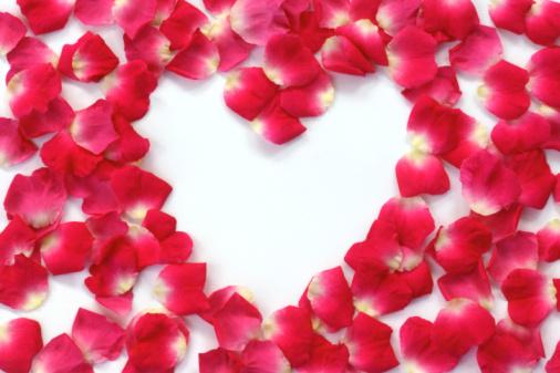 Heart「Scattered pink rose petals enclosing heart shape.」:スマホ壁紙(4)