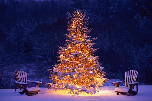 Adirondack Chair「Snow Covering Adirondack Chairs by Lit Christmas Tree」:スマホ壁紙(0)