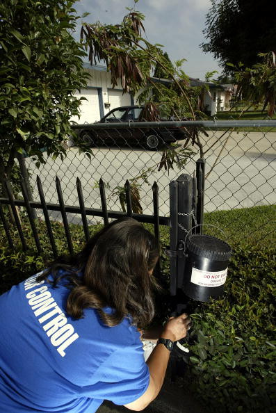 Effort「West Nile Virus Gains Foothold in Southern California」:写真・画像(0)[壁紙.com]