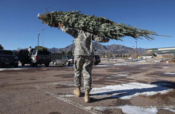 Tree「Military Families Receive Free Christmas Trees At Fort Carson」:写真・画像(5)[壁紙.com]