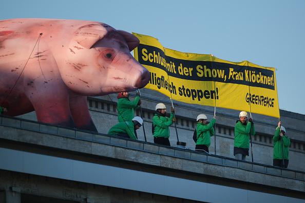 Inexpensive「Green Week Agricultural Trade Fair Opens In Berlin」:写真・画像(18)[壁紙.com]