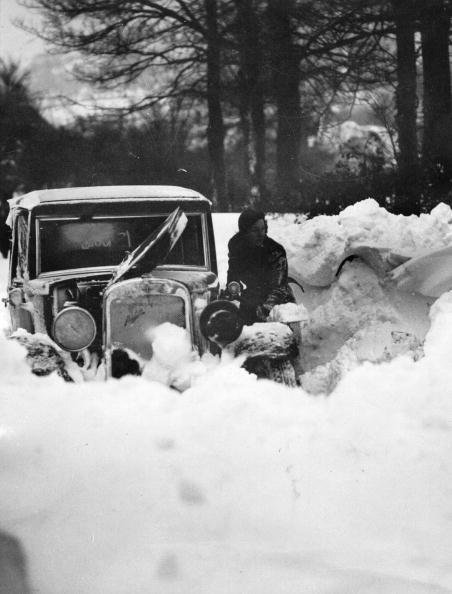 Snowdrift「Snow Drift」:写真・画像(16)[壁紙.com]
