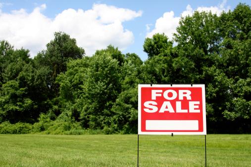 Sale「Land for Sale」:スマホ壁紙(5)