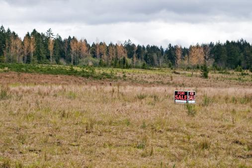 For Sale「Land for Sale」:スマホ壁紙(2)