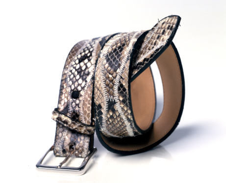 Belt「snake leather belt」:スマホ壁紙(9)