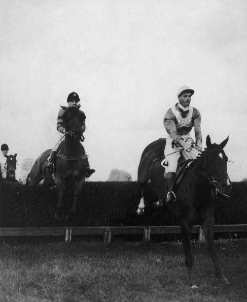 Horse「Fontwell Park」:写真・画像(9)[壁紙.com]