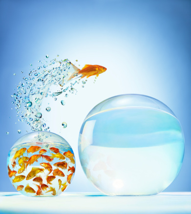 Digital Composite「Goldfish jumping out of overcrowded bowl into em」:スマホ壁紙(1)
