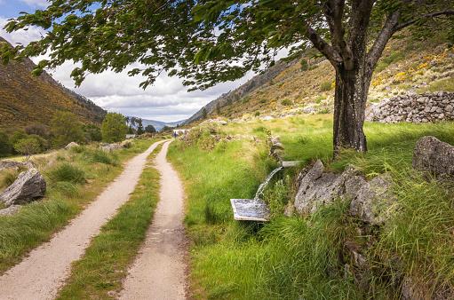 Dirt Road「Hiking trail in the Serra da Estrela of Portugal」:スマホ壁紙(18)