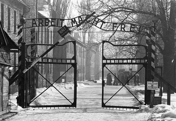 Entrance「Gates Of Auschwitz」:写真・画像(9)[壁紙.com]