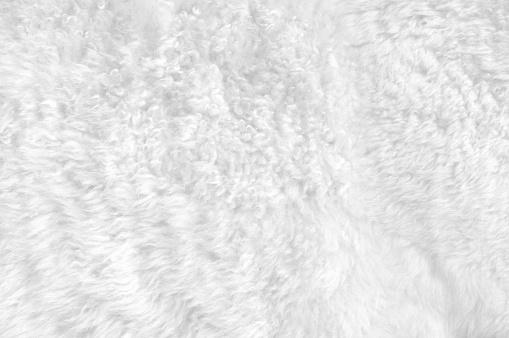 Animal Hair「Close-up of a soft white furry blanket」:スマホ壁紙(8)