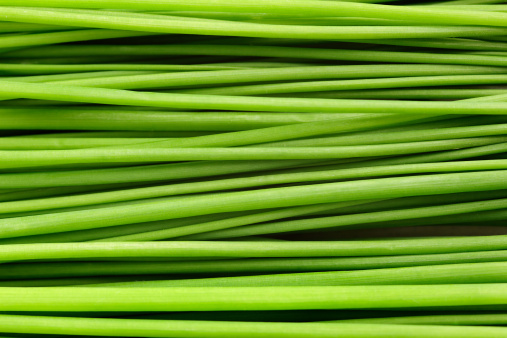 Onion「Close-up of a bunch of chives laying down.」:スマホ壁紙(2)