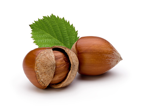 Nut - Food「Close-up of hazelnuts isolated on white background」:スマホ壁紙(14)