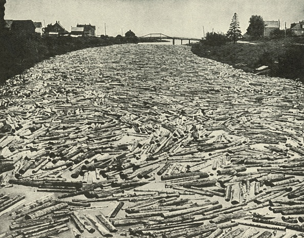 Lumber Industry「On Their Way To The Saw Mills」:写真・画像(16)[壁紙.com]