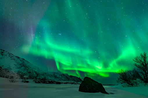 Aurora Polaris「Northern Lights, Aurora Borealis over the Lofoten Islands in Northern Norway during winter」:スマホ壁紙(8)
