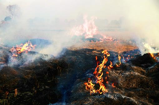 Inferno「Pollution」:スマホ壁紙(7)