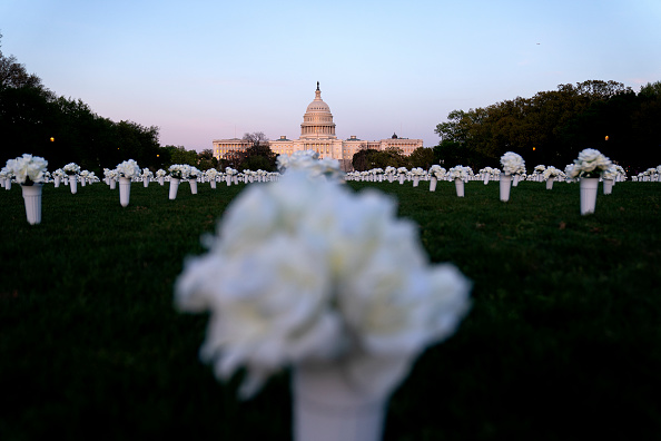 Capitol Hill「40,000 Silk Flowers Installed On National Mall To Remember Victims Of Gun Violence」:写真・画像(17)[壁紙.com]