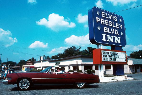 Motel「Elvis Presley tribute.」:写真・画像(2)[壁紙.com]