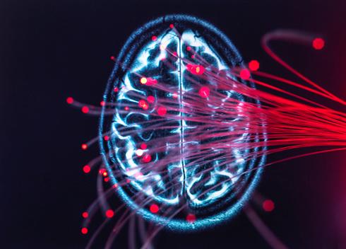 Big Data「Neuroscience, Fibre optics carrying data around the brain」:スマホ壁紙(8)