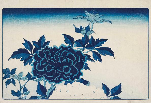 Illustration Technique「Aizuri-E With Flowers」:写真・画像(18)[壁紙.com]