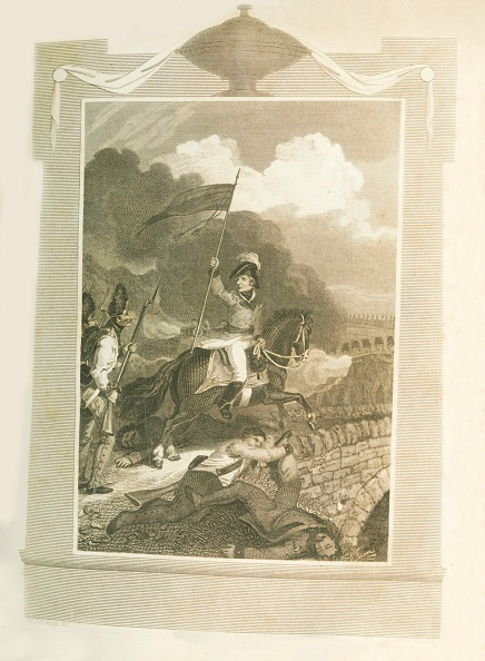 Mammal「Buonaparte Atttempting To Force The Bridge Of Arcola」:写真・画像(17)[壁紙.com]