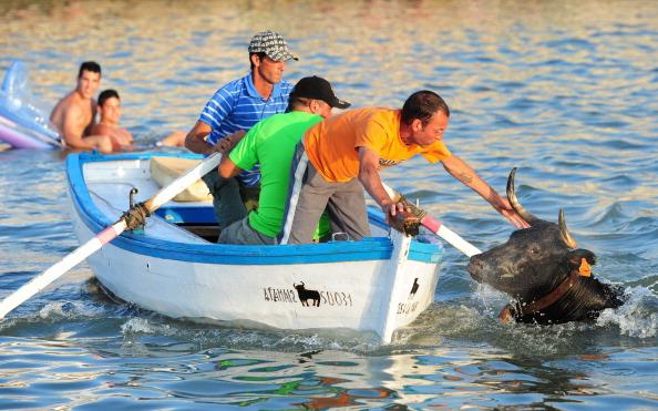 Fisherman「Revellers Chase Bulls Into The Sea During The Bous A La Mar Festival」:写真・画像(19)[壁紙.com]