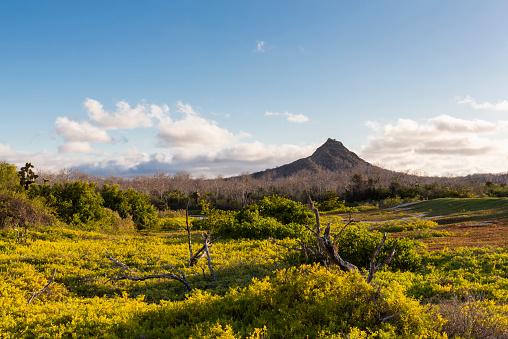 Volcano Islands「Ecuador, Galapagos Islands, Santa Cruz, view to volcano」:スマホ壁紙(5)