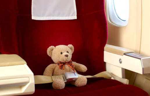 Commercial Airplane「Teddy bear in first class seat」:スマホ壁紙(4)