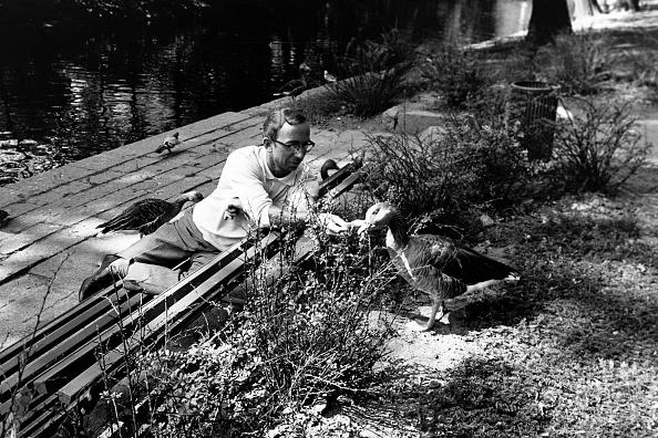 Bench「Journey Through Sweden」:写真・画像(16)[壁紙.com]