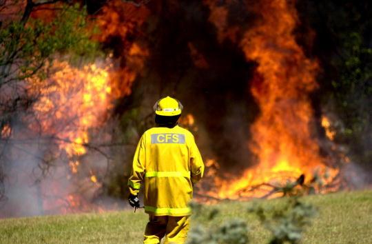 Inferno「Sydney Bush Fire」:写真・画像(7)[壁紙.com]