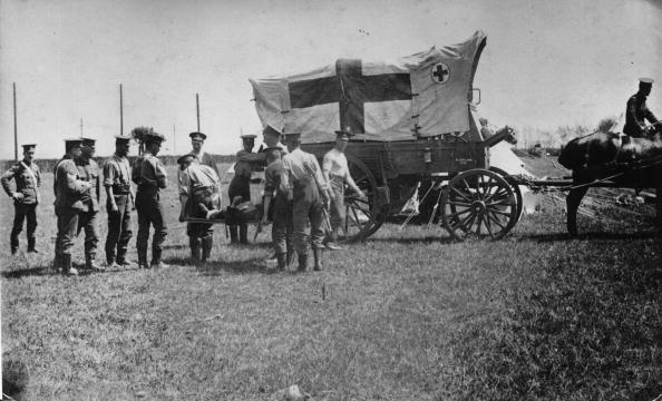 Horse「Ambulance」:写真・画像(14)[壁紙.com]