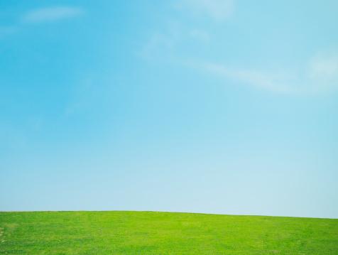 Sun「Lawn and the sky」:スマホ壁紙(13)
