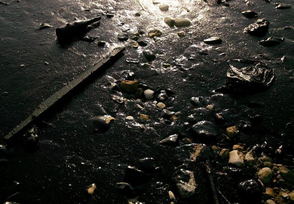 Ecosystem「Massive Oil Spill Covers Lebanese Coast Line」:写真・画像(12)[壁紙.com]