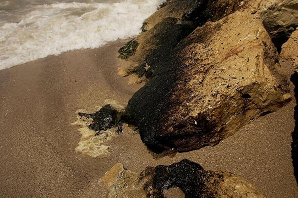 Ecosystem「Massive Oil Spill Covers Lebanese Coast Line」:写真・画像(10)[壁紙.com]