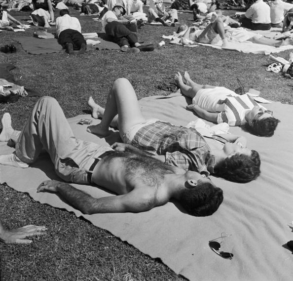 Recreational Pursuit「Lie Back In The Sun」:写真・画像(5)[壁紙.com]