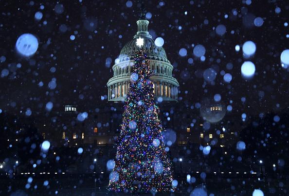 Snow「A Wintry Mix Of Sleet And Snow Falls On Washington」:写真・画像(18)[壁紙.com]