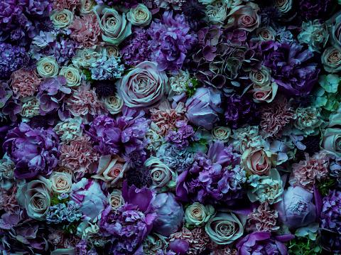 明るい色「Atmospheric floral arrangement, full frame」:スマホ壁紙(14)