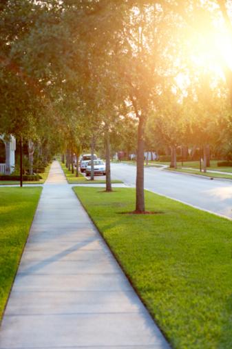 Tranquility「Sidewalk on tree-lined street」:スマホ壁紙(3)