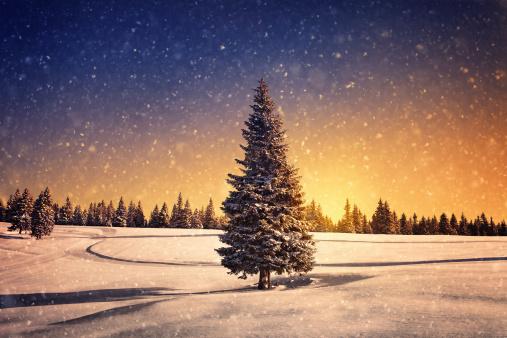 Glade「Winter Sunset」:スマホ壁紙(19)